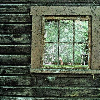 Squam Window